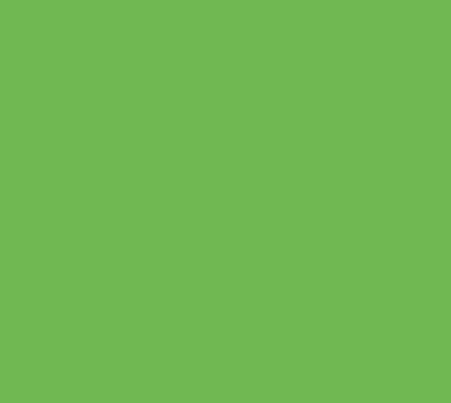 NetGroep
